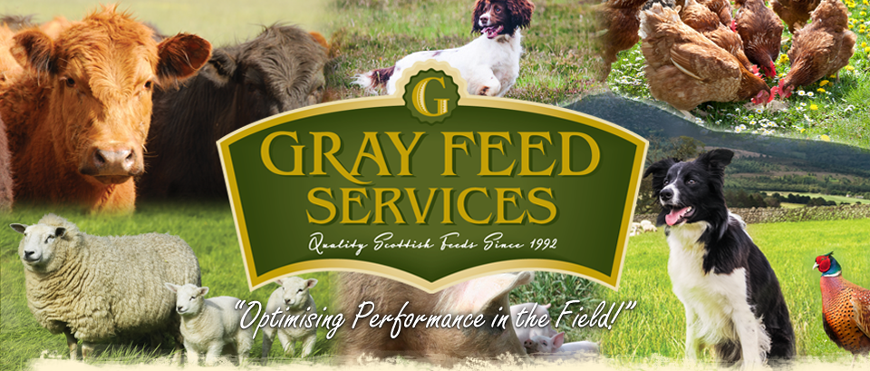 Grays feed services